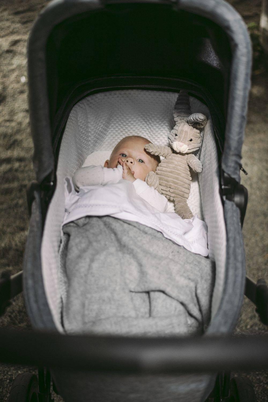 Thule Sleek - gondola - Grey Melange