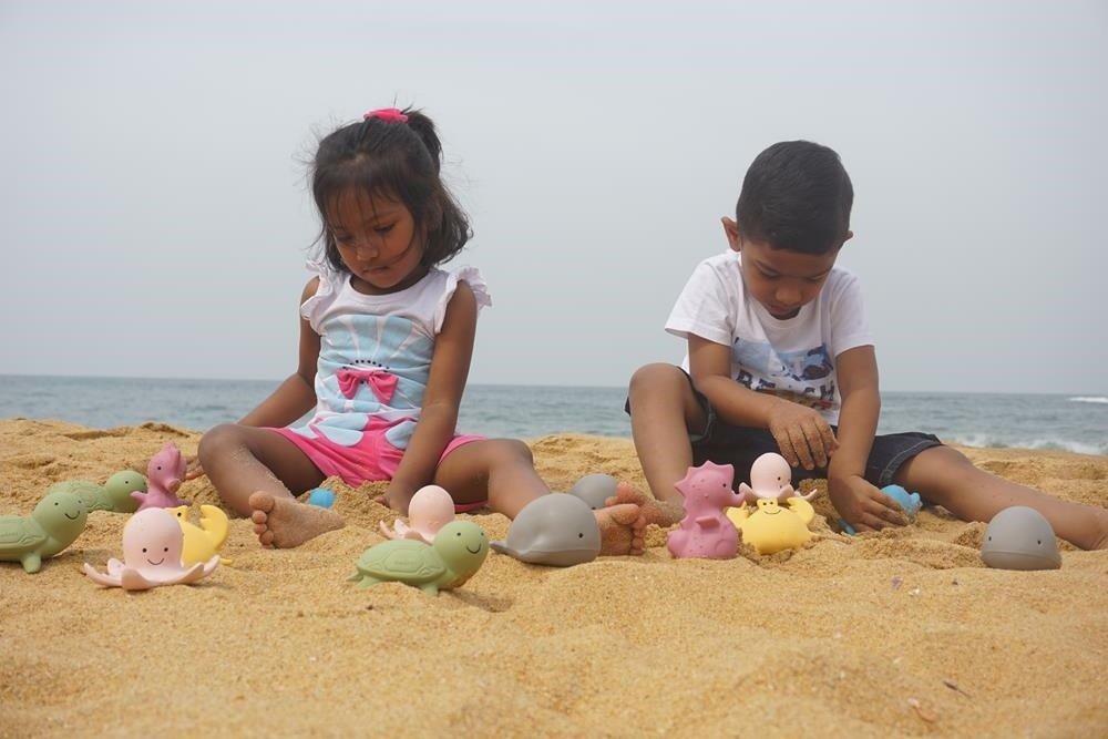 Tikiri - Gryzak zabawka Konik Morski Ocean w pudełku